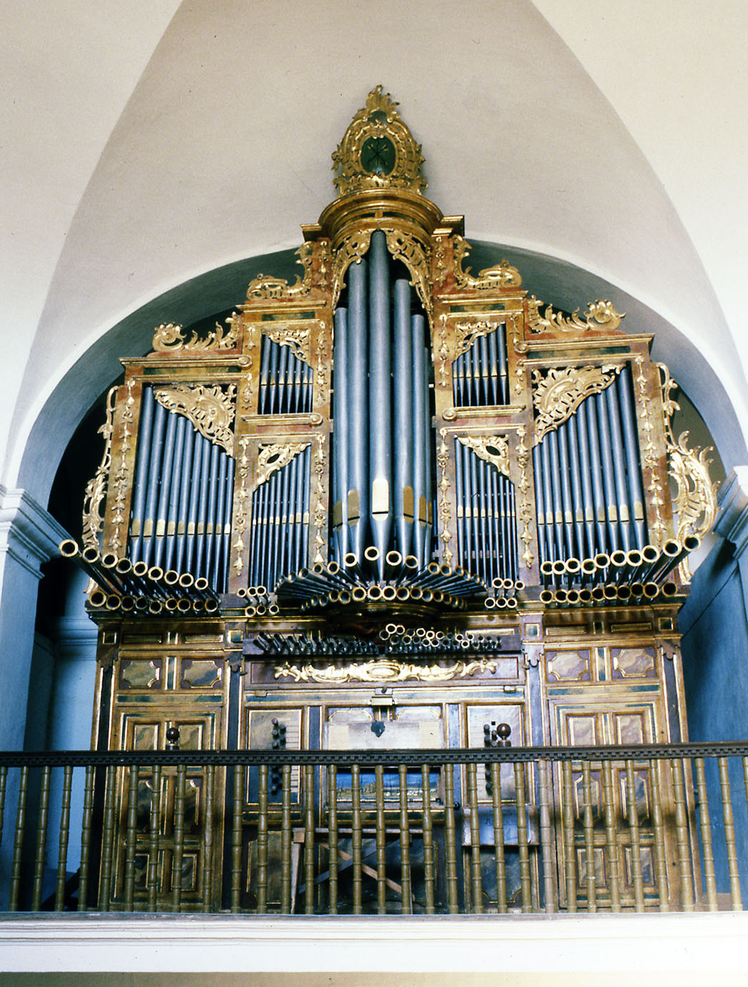 Abarca-organo